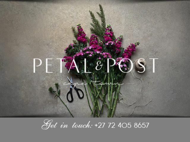 Petal & Post Cape Town